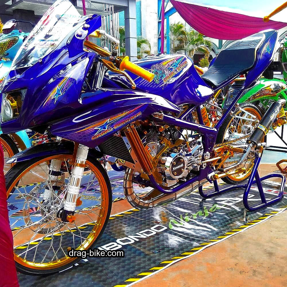 Ninja 150 RR Modif Simple Street Racing Mothai Thailook Style